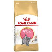 Сухой корм Royal Canin British Shorthair Kitten для британских короткошерстных котят до 12 месяцев, 2 кг