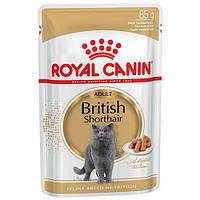 Влажный корм Royal Canin British Shorthair Adult для британских кошек, 85 г