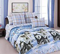 """Комплект постельного белья """"Хаски"""", размер наволочек 50*70 см, перкаль (Полуторный)"""