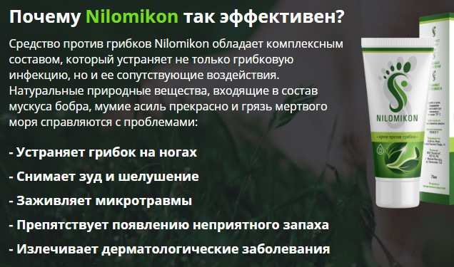 почему ниломикон