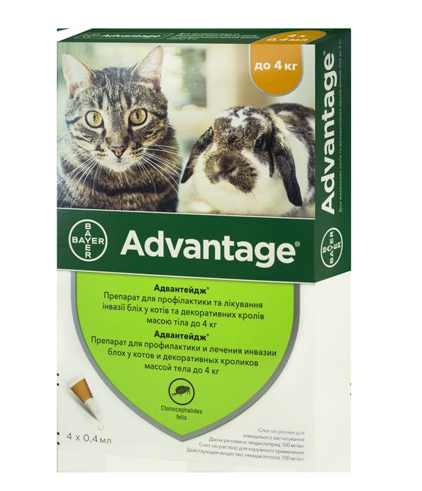 Bayer Advantage (Адвантейдж) капли от блох, клещей для кошек до 4 кг (цена за упаковку 4шт)