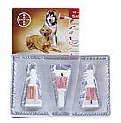 Bayer Advocate (Адвокат) капли от блох, клещей, глистов для собак 10-25 кг. (цена за упаковку 3шт), фото 2