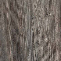 4161-WH Mystic Pine