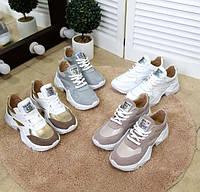 Модные женские кроссовки цвета разные TOPs2539