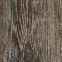 4180-WH  Blackforest Oak