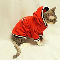 Купить одежду для кота интернет магазин