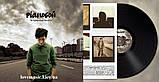 Вінілова платівка PIANOБОЙ Не прекращай мечтать (2013) Vinyl (LP Record), фото 3