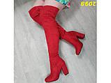 Сапоги чулки ботфорты классика на широком удобном каблуке замшевые красные 38, 39 (2098), фото 7