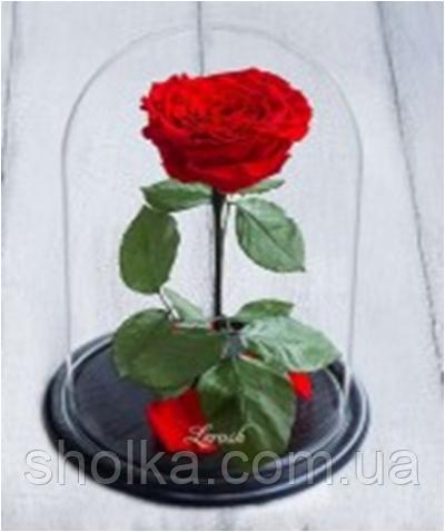 Вечная роза. Роза в колбе с LED  БОЛЬШАЯ КРАСНАЯ №A78