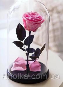 Вечная роза. Роза в колбе с LED БОЛЬШАЯ РОЗОВАЯ №A78