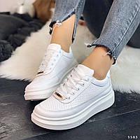 Кроссовки криперы белые перфорированные, фото 1