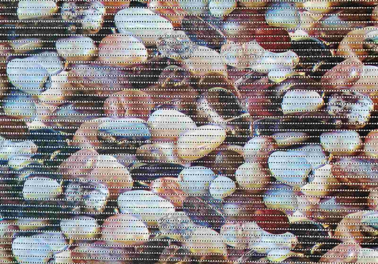 Универсальный Коврик Аквамат 65 рулонный