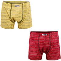 Детские трусы-шорты для мальчика *Меланж-1* размер 38                                               , фото 1