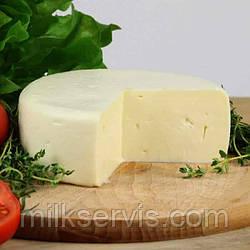 Готовим Сулугуни дома, рецепт на 10 л молока