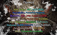 Прибытие ASN, FitMax, MST, NOSOROG, NutraBolics, Powerful Progress, BLASTEX, BSN, DNA Supps (OLIMP), EXTRIFIT, FitLife, Hydra Cup, IronFlex, Mars, Megabol, Monsters, MyProtein, Nutrend, OLIMP, OstroVit, Scitec Nutrition, Scivation (Xtend), SNICKERS, VALE, Yamamoto nutrition.