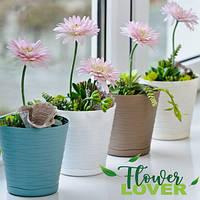 Горщики для квітів Don-Plast Tedi 17см
