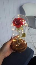 Вечная роза в колбе с LED подсветкой 21*9 см. Вечно живая роза с подсветкой, фото 2