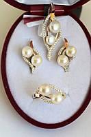 Серебряный набор с золотыми пластинами ЖРИЦА