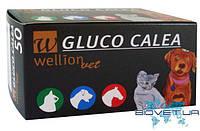 Тест-полоски Wellion Gluco Calea №50 (Австрия), Gluco Calea ts