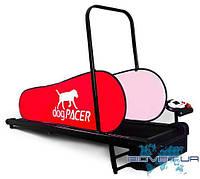 Беговая дорожка для собак dogPACER