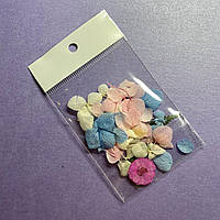 Декор для дизайна ногтей Сухоцветы
