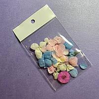 Декор для для дизайна ногтей Сухоцветы
