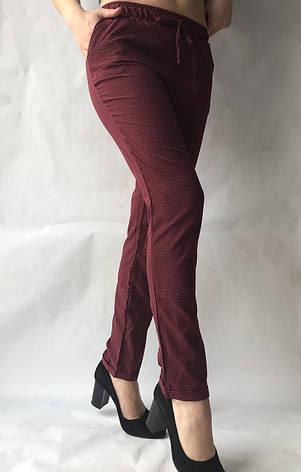 Женские летние штаны N°17 горох  (БАТАЛ), фото 2