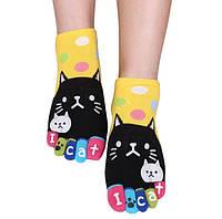 Носки с пальцами Привет Кот JOKEJOLLY 36-40 Желтый