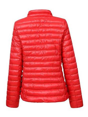 Куртка жіноча Glo-Story L, фото 2