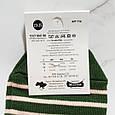 Шкарпетки жіночі Панда в зелену смужку розмір 35-40, фото 4