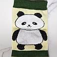 Шкарпетки жіночі Панда в зелену смужку розмір 35-40, фото 3