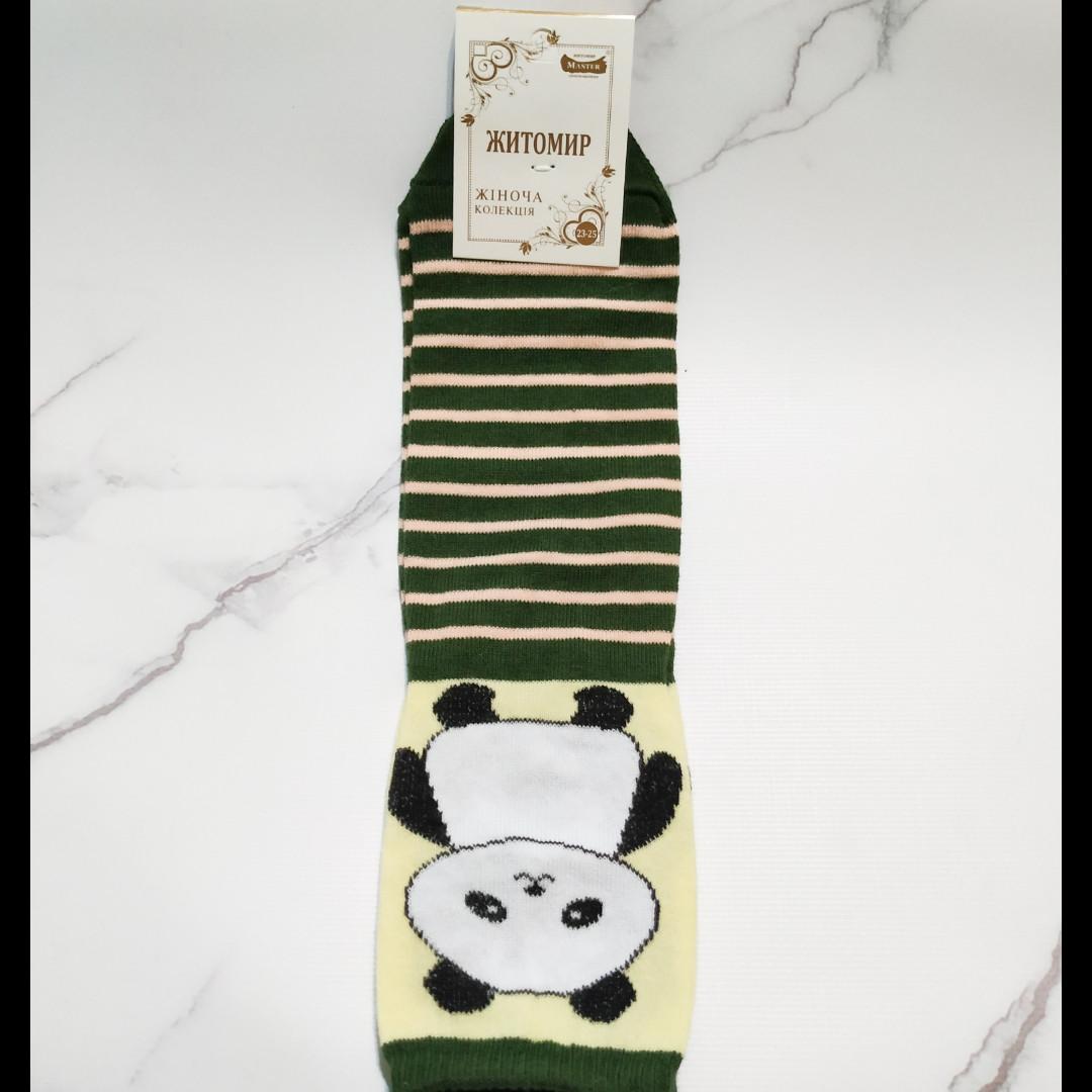 Носки женские Житомир 🐼 в зелёную полоску размер 35-40