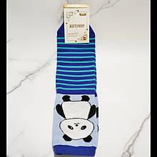 Шкарпетки жіночі Панда в блакитну смужку розмір 35-40