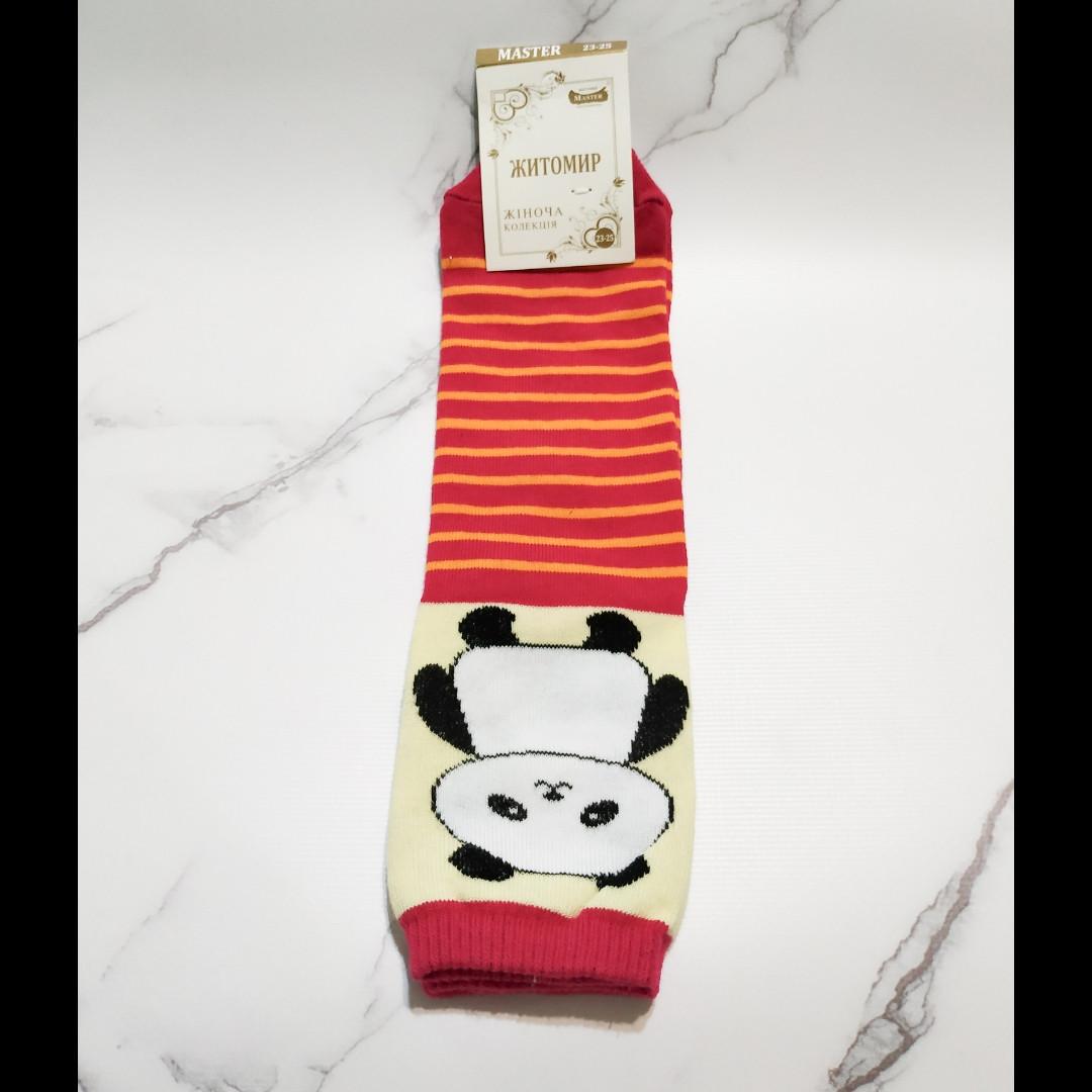 Носки женские Житомир 🐼 в оранжевую полоску размер 35-40