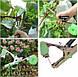 Степлер усиленный для подвязки растений винограда, овощей, цветов tapetool, фото 3