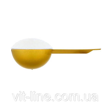 California Gold Nutrition  Морський колаген  206гр, фото 2