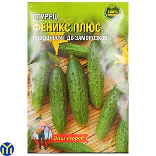 Семена огурца Феникс Плюс, плодоносит до заморозков