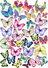 Вафельна картинка Метелики 20
