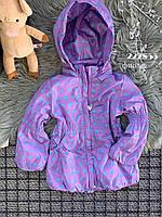 Вітровка для дівчинки на флісі фіолетова у блакитний горох
