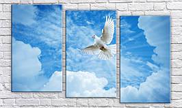 Картина модульная HolstArt Голубь в небе 62*100см арт.HAT-232
