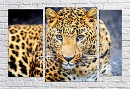 Картина модульная HolstArt Леопард 79*120 см арт.HAT-222