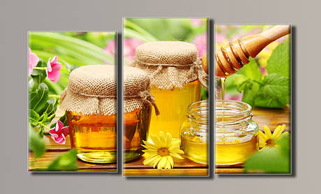 Картина модульная HolstArt Баночки с мёдом 54*90см 3 модуля арт.HAT-042, фото 2