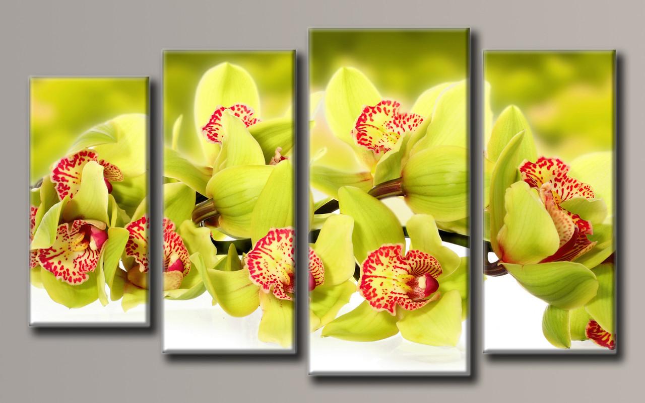Картина модульная HolstArt Зелёная орхидея 55*92,5см 4 модуля арт.HAF-121