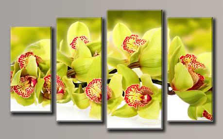 Картина модульная HolstArt Зелёная орхидея 55*92,5см 4 модуля арт.HAF-121, фото 2