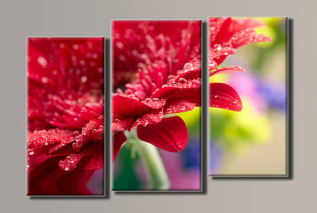 Картина модульная HolstArt Красная гербера 57*80см 3 модуля арт.HAT-058, фото 2