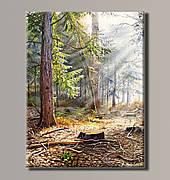 Картина (не раскраска) HolstArt Живописный лес 54*70,5см арт.HAS-388