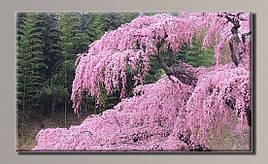 Картина (не раскраска) HolstArt Япония 89*54см арт.HAS-346