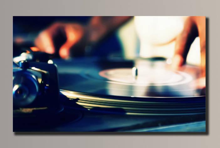 Картина HolstArt DJ Max 54*32,5см арт.HAS-007, фото 2