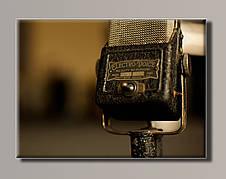 Картина HolstArt Микрофон 54*39,5см арт.HAS-410
