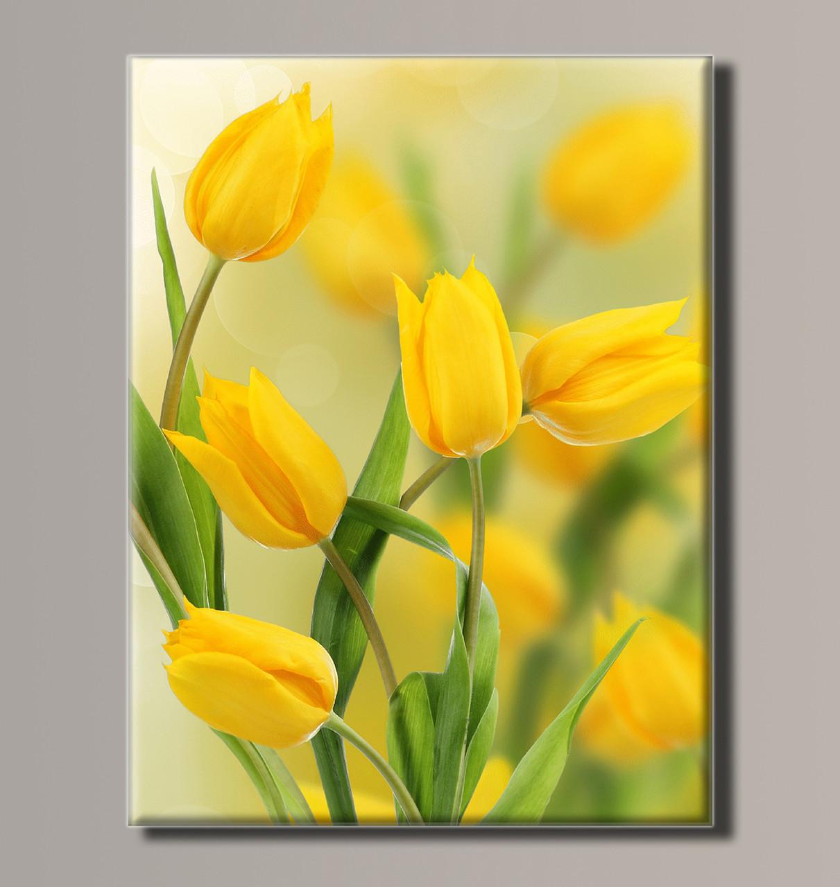 Картина HolstArt Желтые тюльпаны 41*54 см арт.HAS-196